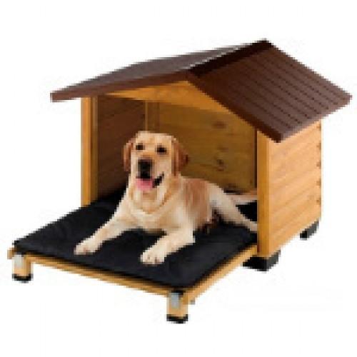 Σπίτι & Ύπνος Σκύλων